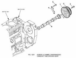 0231 распределительный вал и шестерня/camshaft and driving gear